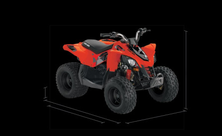 CAN-AM DS 90 2020 - Can-Am Red