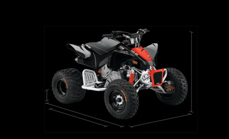 CAN-AM DS X 90 2020 - Black/Can-Am Red