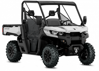 CAN-AM TRAXTER PRO HD10 T 2019, 60 km/h - Hopea